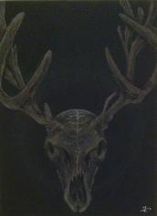 Deer Skull - Charchoal